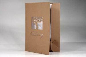 печать папок из картона с логотипом