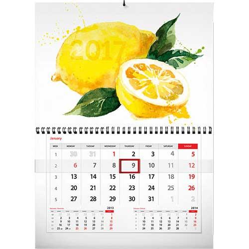 Календари шорт, моно